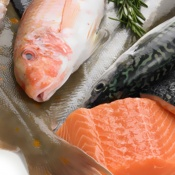 Fish and Sea Food, Solutions, RECORD, Flow Pack Machines and Equipment for Flexible Packaging