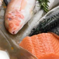 Fish and Sea Food, RECORD, Flow Pack Machines and Equipment for Flexible Packaging