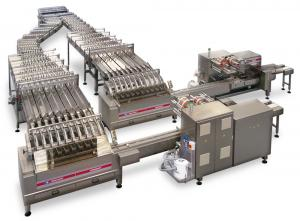 Packaging System for Biscuits, Packaging Systems, RECORD, Flow Pack Machines and Equipment for Flexible Packaging
