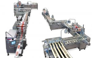 Packaging System for Crackers, Packaging Systems, RECORD, Flow Pack Machines and Equipment for Flexible Packaging