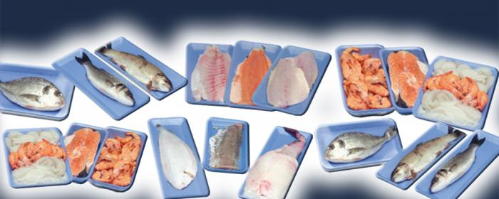 Poisson & fruits de mer, Solutions, RECORD, Machines d'emballage et de conditionnement primaire et secondaire de sachets flow pack